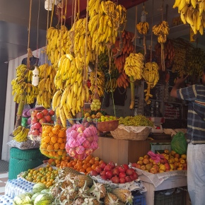 Indian Fruit Stands