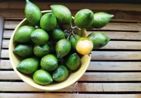 Guinep (Quenepa, Mamoncillo, Chennette, SpanishLime)